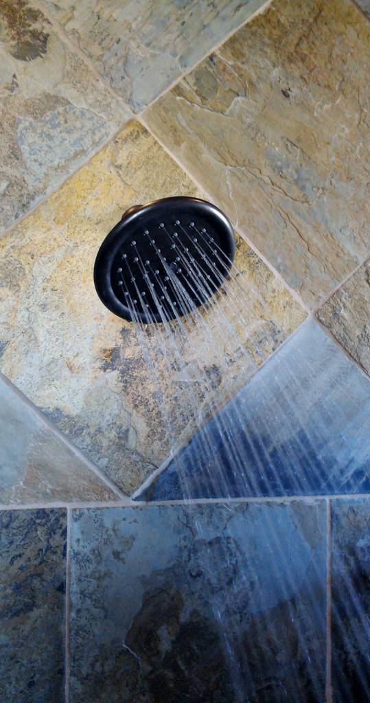 Moen IoDIGITAL Shower (13)