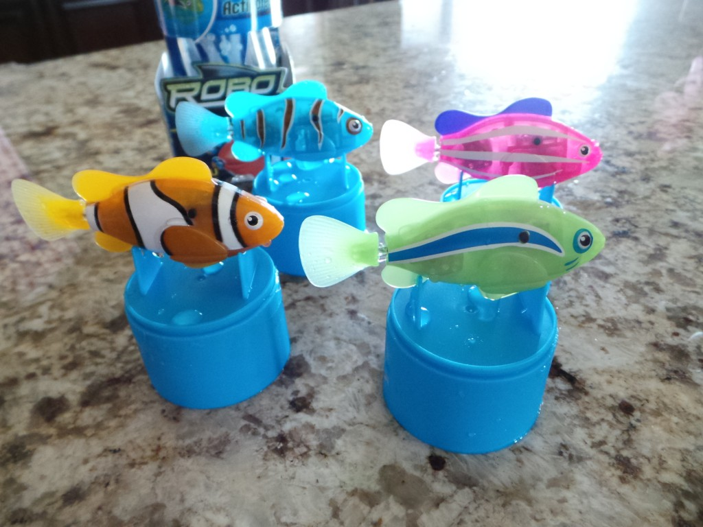 There 39 s a new fish in your kids 39 fishbowl the well for Swimming fish cat toy