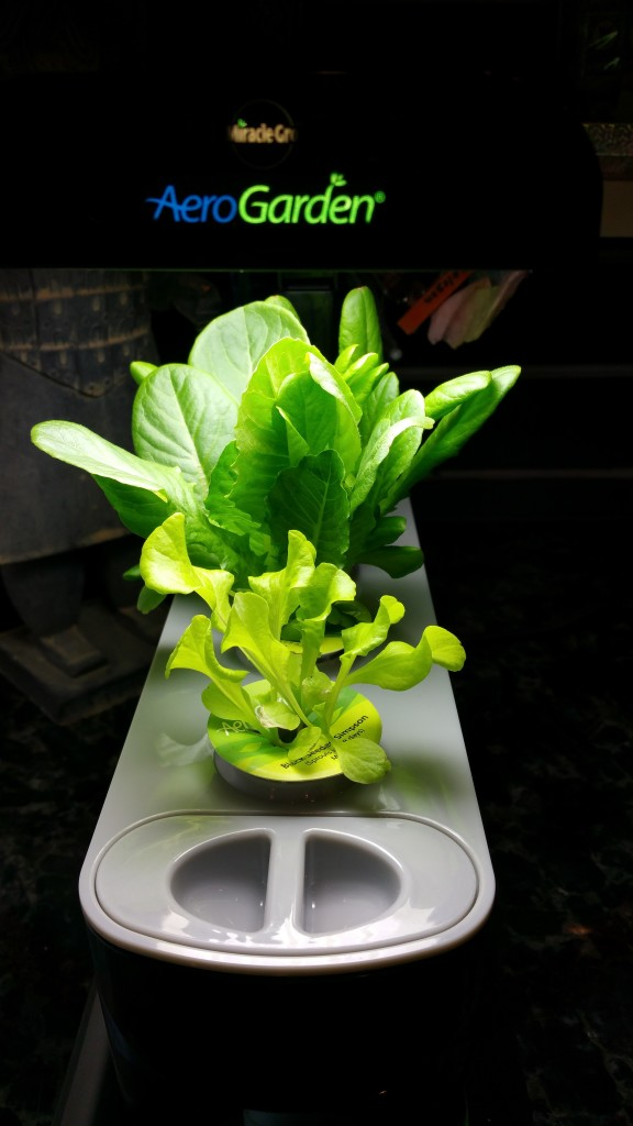 The AeroGarden 3SL
