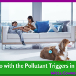 Have Allergies? Time for an Air Cleaner