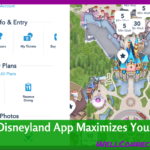 Disneyland App Saves Time